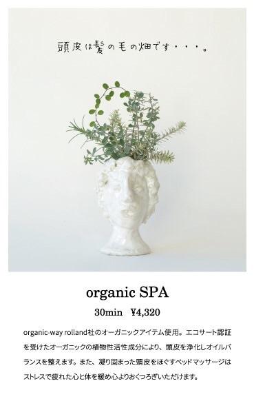 限定50名様に、 2/1〜2/28迄の期間new organicSPA を ¥3000にて施術させて頂けます♪